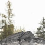 Grey Rock 1